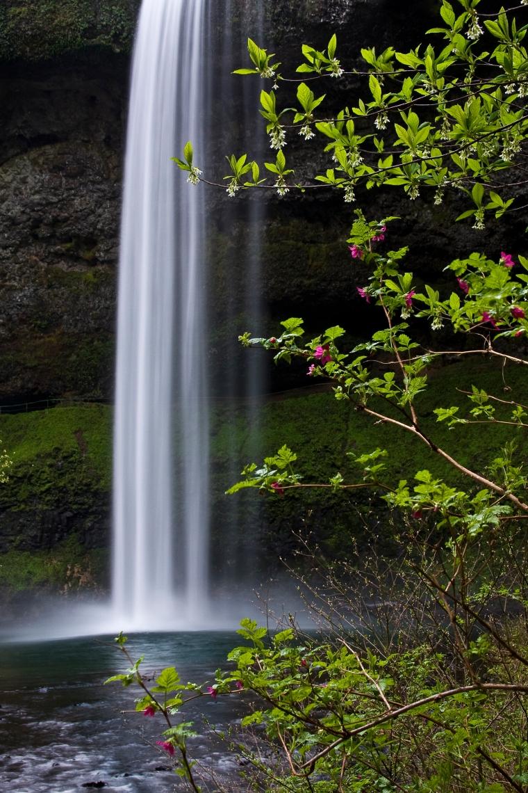 2009 Silver Falls_7521