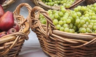organic fruit_1002